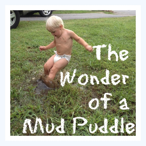 mud puddle text